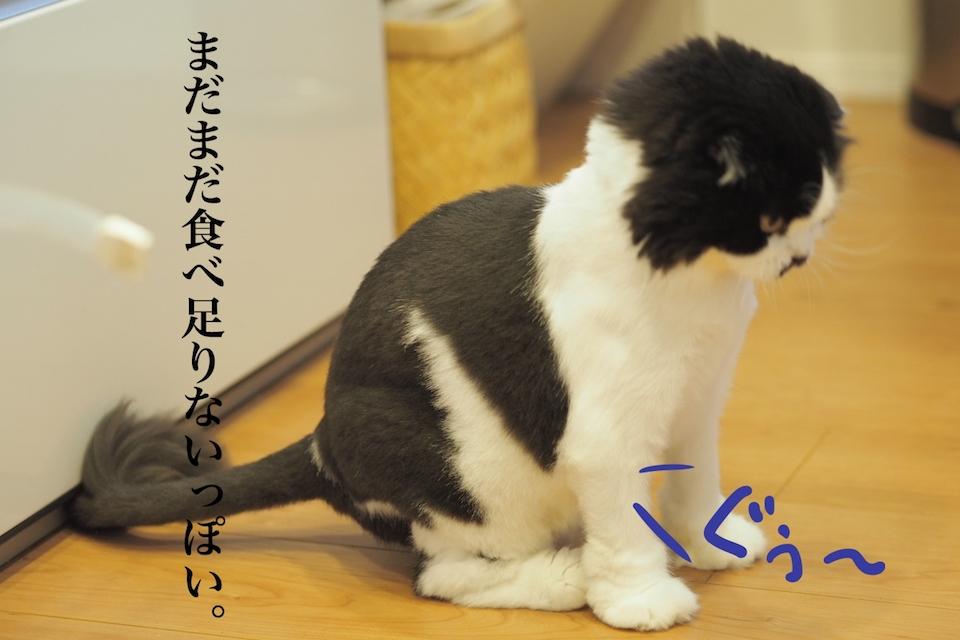 f:id:m_uta:20170821145720j:plain