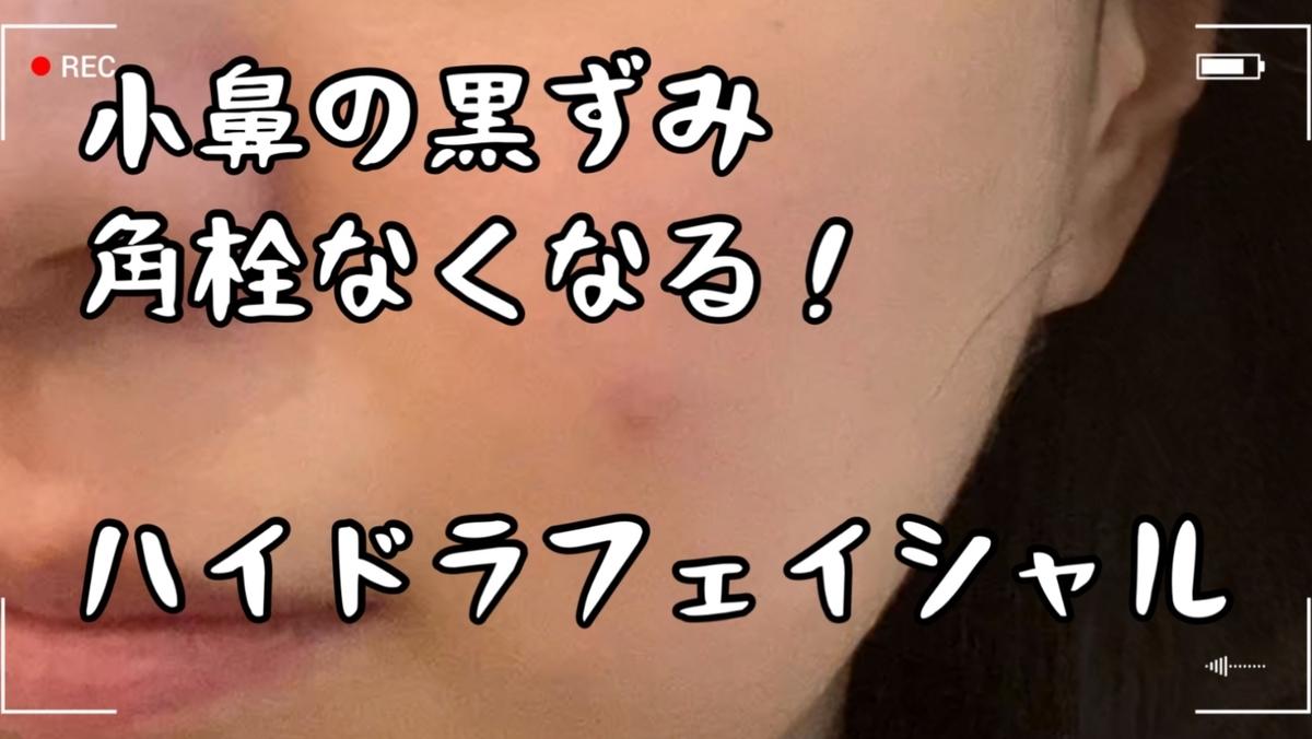 f:id:ma-ru-mi:20210228130436j:plain