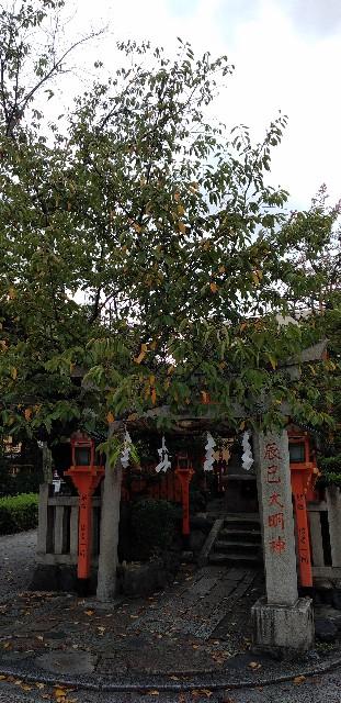 f:id:ma-tarou_namahamu:20200928061906j:image