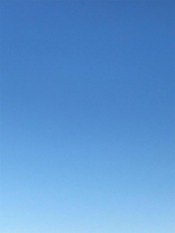 f:id:ma-taru:20210120152118j:image