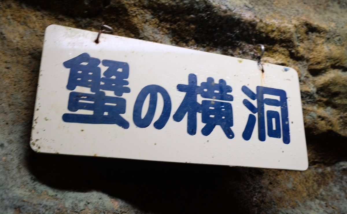 f:id:ma_naru:20201204155717j:plain