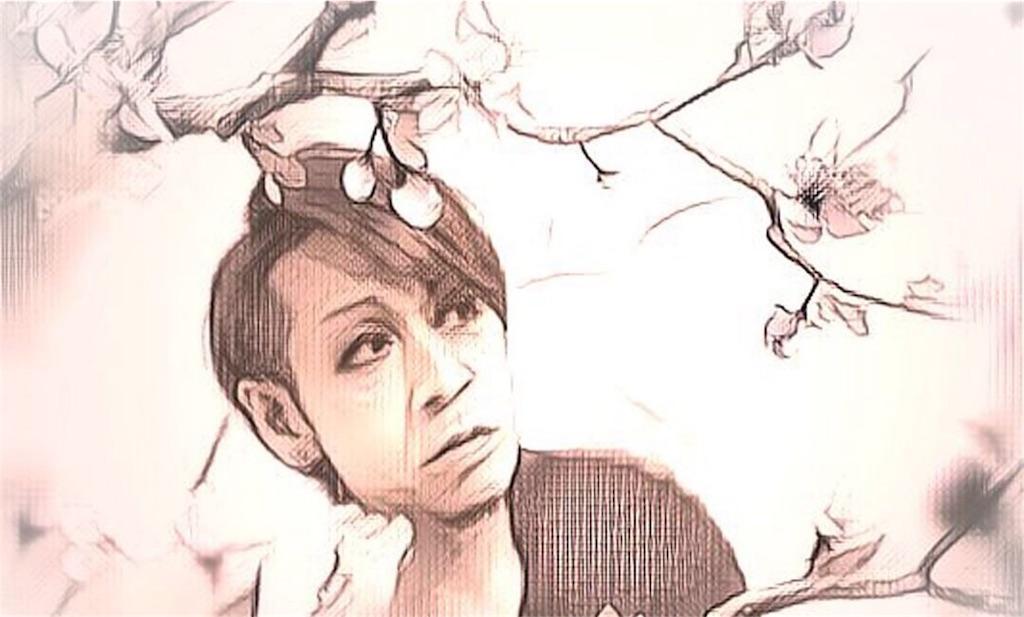 f:id:ma_tsuki62:20180415231748j:image