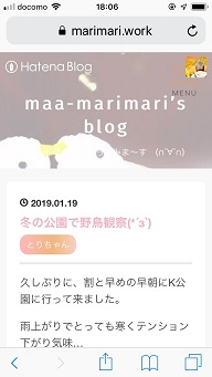 f:id:maa_marimari:20190120181106j:plain