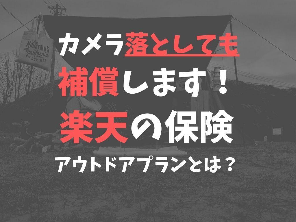 f:id:mabo2011:20210522093407j:plain