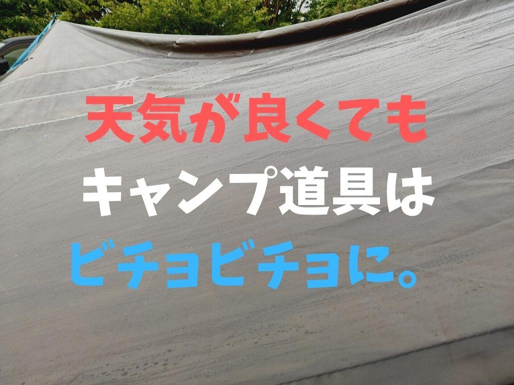 f:id:mabo2011:20210611055533j:plain