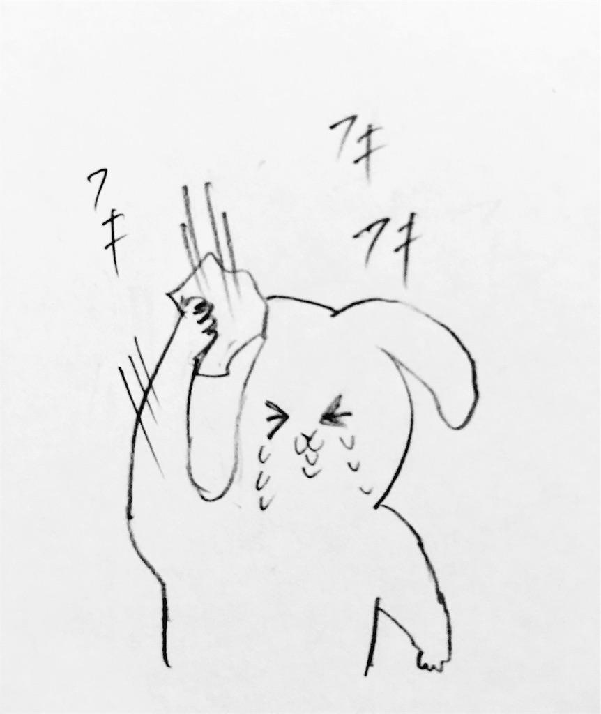 f:id:mabushisugirutaiyou:20161028045034j:image