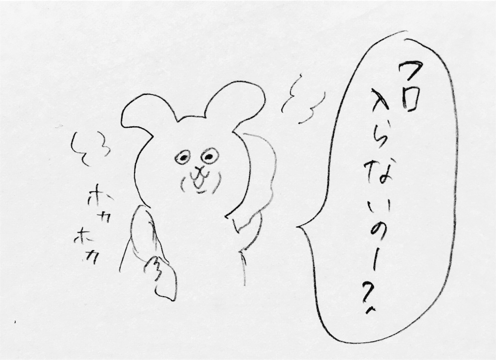 f:id:mabushisugirutaiyou:20170205013853j:image