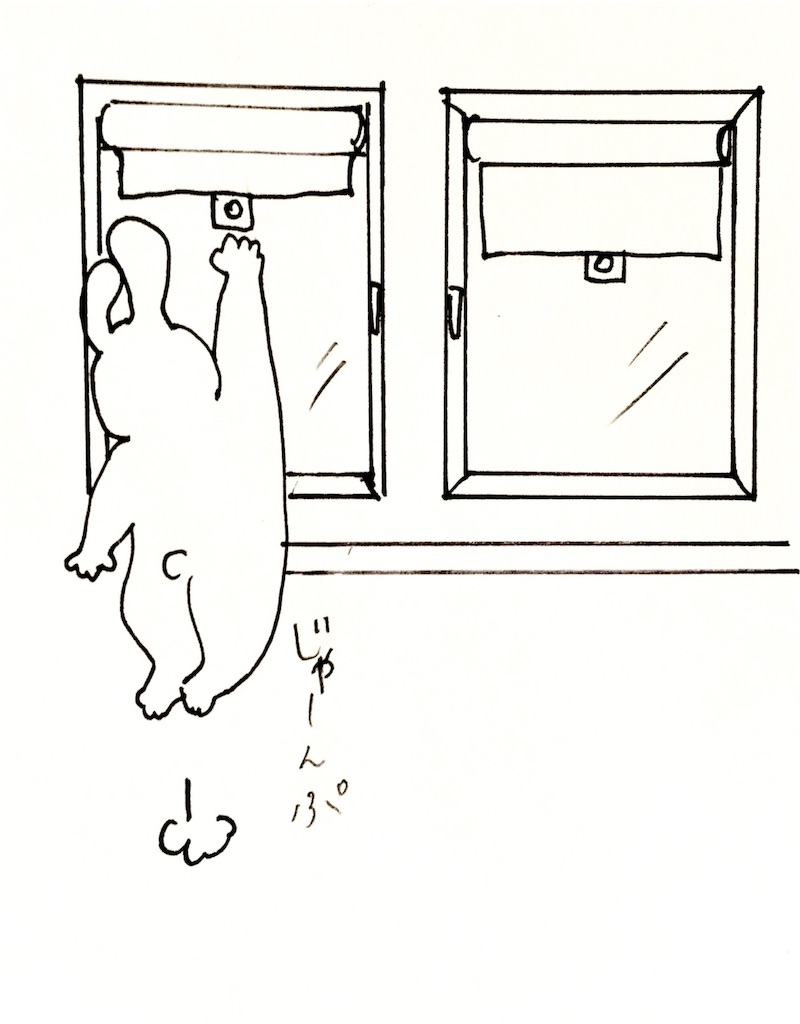 f:id:mabushisugirutaiyou:20170402042944j:image