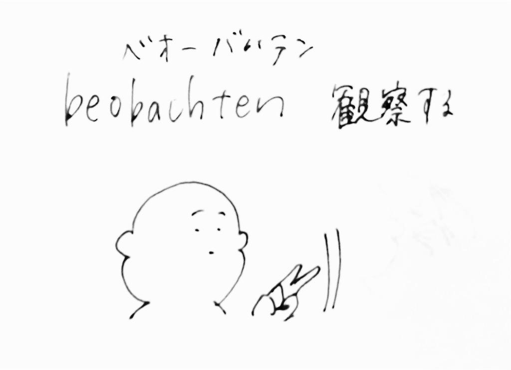 f:id:mabushisugirutaiyou:20170513021826j:image