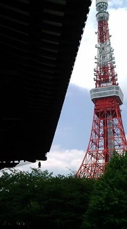 20090716-05東京 芝 増上寺 大殿から見る東京タワー