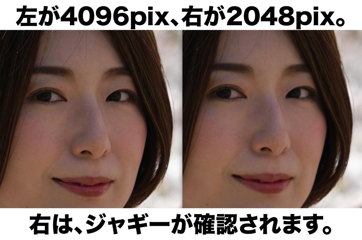 f:id:mac_papa:20210106161503j:plain