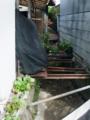 [水路][植栽]用水端の花鉢、もはや用水上へ