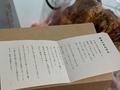 藤崎のパンふぇす。に行こう!2019年7月4日(木)~10日(水)レポート編【仙
