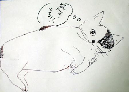 f:id:machida77:20090829154844j:image