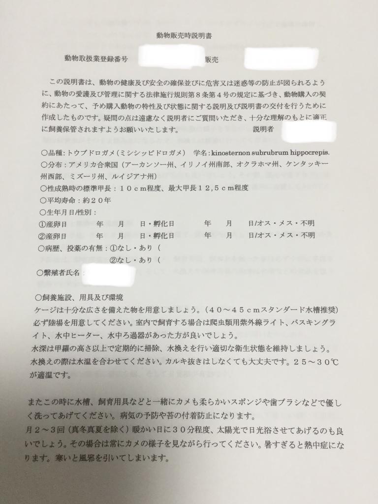 f:id:machidacustom2015:20190213002448j:plain