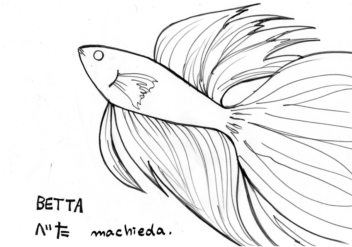 f:id:machieda15:20200810003607j:plain