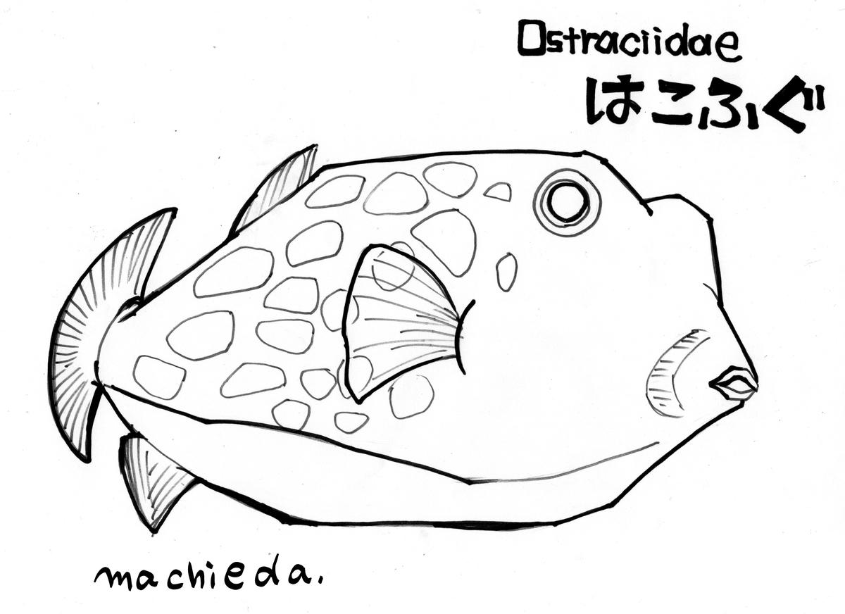 f:id:machieda15:20200810005444j:plain