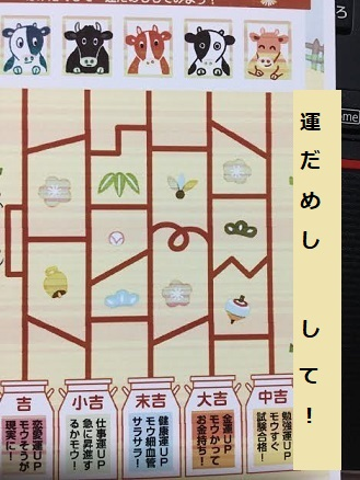 f:id:machiko-e-stainedglass:20210103072810j:plain
