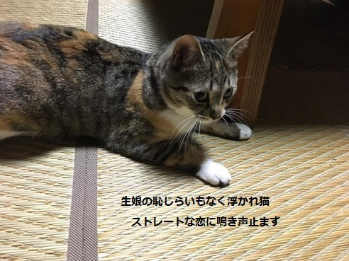 f:id:machiko-e-stainedglass:20210615072921j:plain