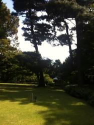 f:id:machiko:20121021112958j:image
