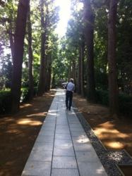 f:id:machiko:20121021113004j:image