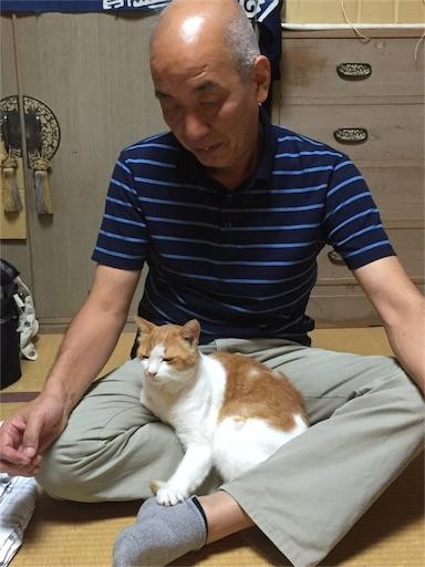 f:id:machiko:20161106161213j:image
