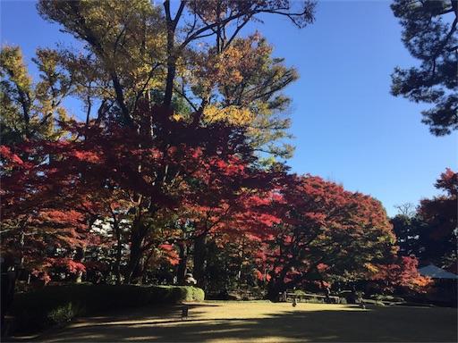 f:id:machiko:20171207072950j:image