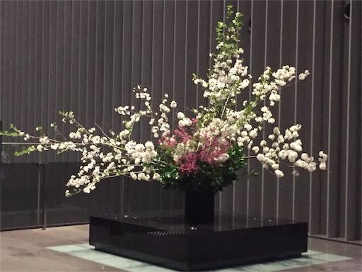 f:id:machiko:20180402221814j:image