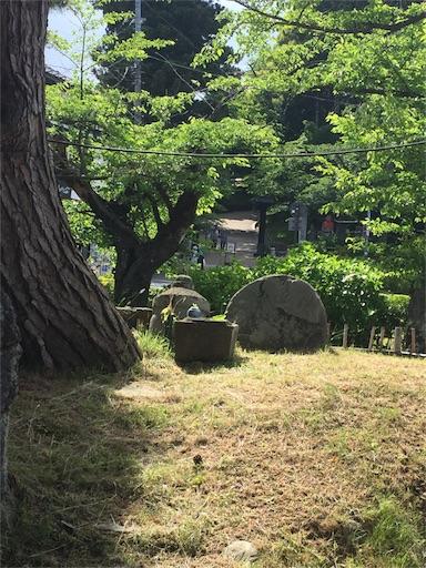 f:id:machiko:20180616162940j:image