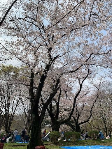 f:id:machiko:20190423071209j:image