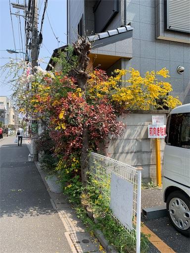 f:id:machiko:20190423073549j:image