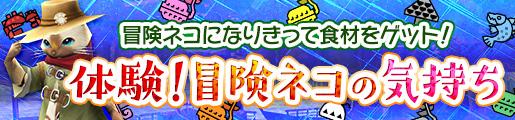 f:id:machikorokoro:20190125031400j:plain