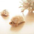 [羊毛フェルトうさぎ][羊毛フェルトアルパカ][羊毛フェルトインコ][羊毛フェルト文鳥]りくがめ