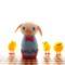 [羊毛フェルトうさぎ][羊毛フェルトアルパカ][羊毛フェルトインコ][羊毛フェルト文鳥]