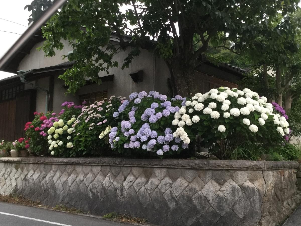 f:id:machimachi22mermaid:20190716061705j:plain