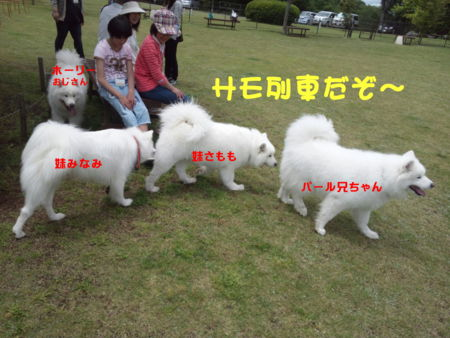 f:id:machisato2:20130518193500j:image