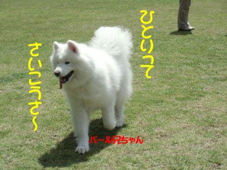 f:id:machisato2:20130518193922j:image