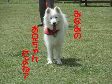 f:id:machisato2:20130518194131j:image