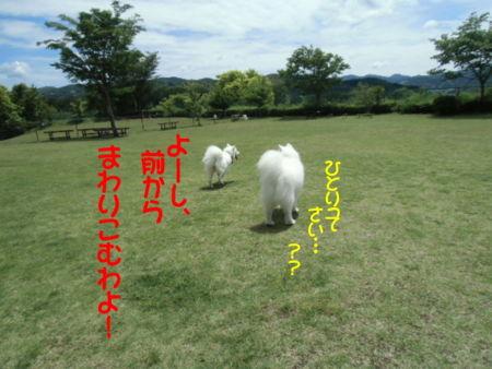 f:id:machisato2:20130518194246j:image