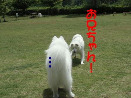 f:id:machisato2:20130518194341j:image