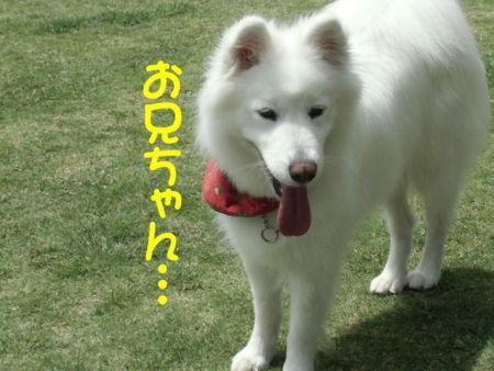 f:id:machisato2:20130518194531j:image