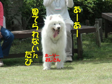 f:id:machisato2:20130518194550j:image