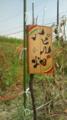 f:id:machiyu_ki:20100801133110j:image:medium:right