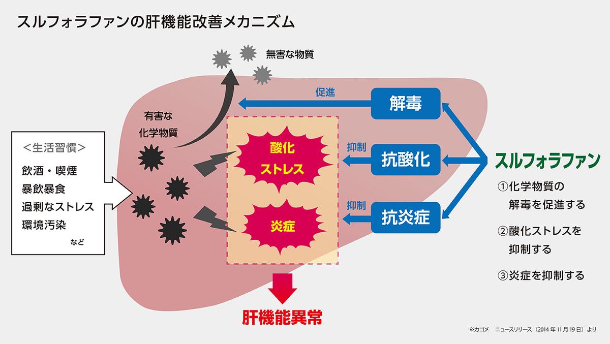 f:id:machiyuu:20200321003633j:plain