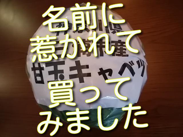 f:id:madameokami:20210227155904j:plain