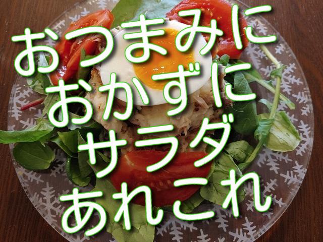 f:id:madameokami:20210803163426j:plain