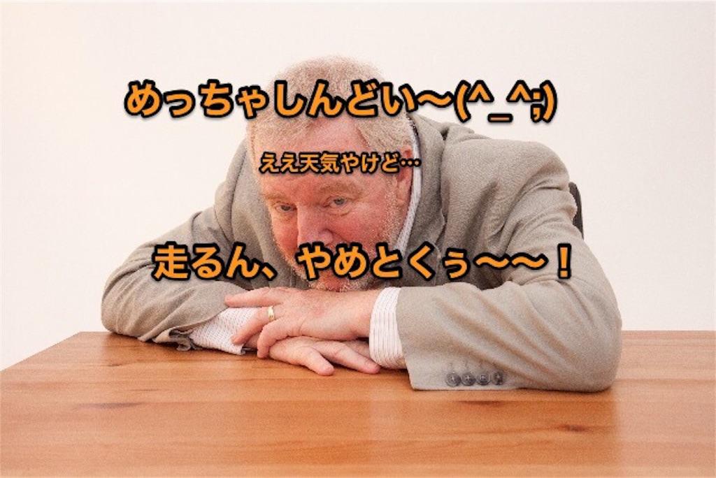 f:id:maddiehayes9915544:20170208161900j:image
