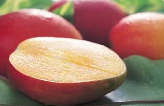 Fruitの画像