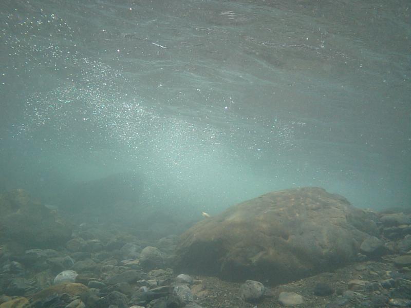 川遊びの画像