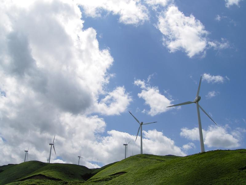 風車の画像